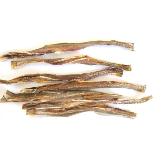 Bombay Duck   Dry Bombay Duck Fish View Specifications Details Of Dry Fish By