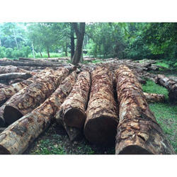 Wood Log Wooden Log Latest Price Manufacturers Amp Suppliers