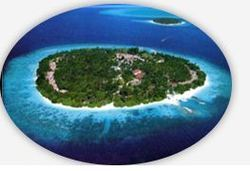 Coral Island Tours Services