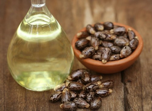 Others - Apple Seed oil Manufacturer from Surat