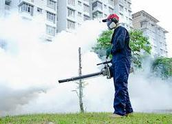 Residential Rodent Best Pest Control Pune