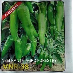 VNR-38 Chilli Seed