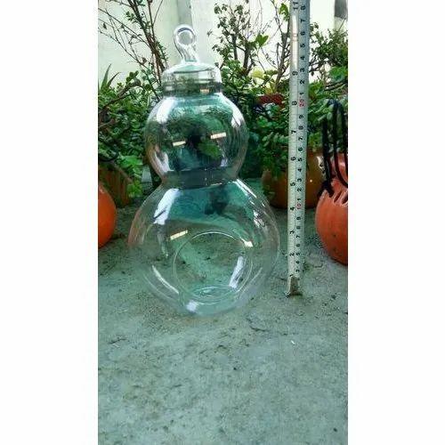 Owl Shaped Terrarium Glass Pot Glass Terrarium