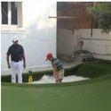 Sports Flooring Golf Grass Carpet