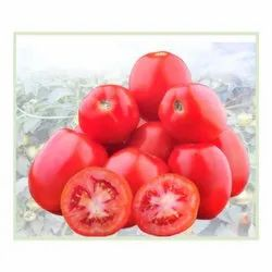 Deep Red Color Gaurav Tomato Seeds, Packaging Size: 10 Gm