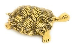 Gold Plated Tortoise
