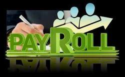 Accredium Provides Payroll Compliance Audits