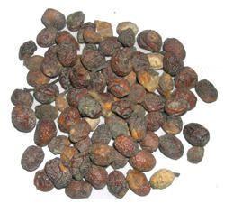 Bakayan Fal/ Melia Azedarach Fruit/ Melia Azedareach