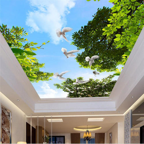 Pvc Stretch Ceilings Rs 450 Square Feet Skyshade