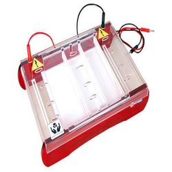 Mini Super Horizontal Immersed Gel Electrophoresis Unit - ACE Model