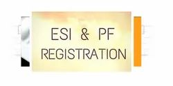 Individual Consultant PF Registration Service