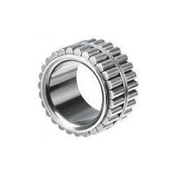 Stainless Steel Roller Bearing