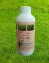 Balram 303 Organic Pesticide