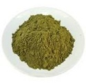 Ginkgo Biloba Extract, Pack Size: Normal, Packaging Type: Drum