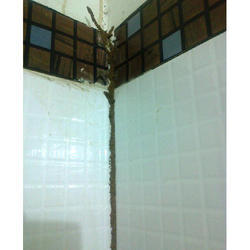 Wood Borer Control Services