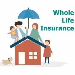 Insurance Services (Life & General Insurance), in india