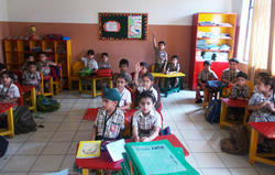 LKG Educational Classes