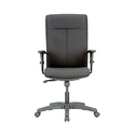 Two Way Adjustable Arms Revolving Office Chair, Back Rest Adjustable: Yes
