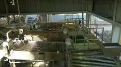 Fruit and Vegetable Packing Conveyors