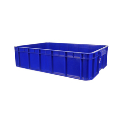 Rectangular Blue Plastic Tray Small Rs 430 Piece Classic