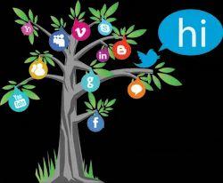 Social Media Design in India