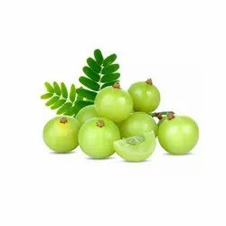 Amla (Emblica-Officinalis)