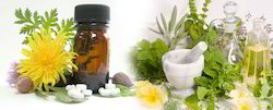 Ayurvedic Herbal Franchise in Korba -Chhattisgarh