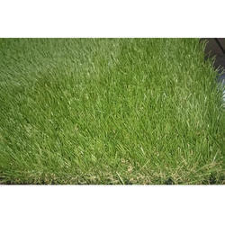 PP Artificial Lawn Grass