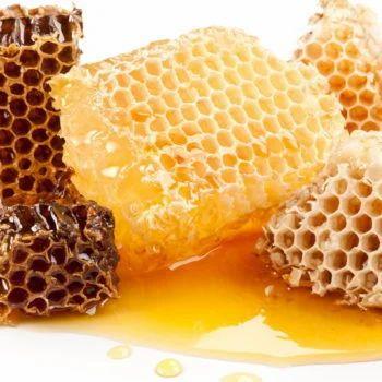 Honey Comb & Beeswax Exporter from Ambala