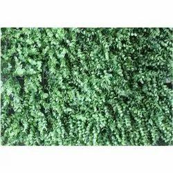 Mat V-7 Artificial Wall Grass