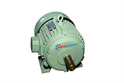 Electric Induction Motor