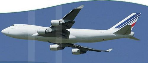 Air Freight Service and Customs Clearance Services Service Provider