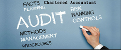 Audit Highlight Services