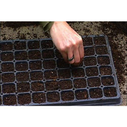 Europack Secondary Hardening Banana Seed Tray, For Agriculture, Size: 8 Cavity