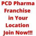 Indian Herbal PCD Companies