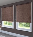 Window Screen/Blinds