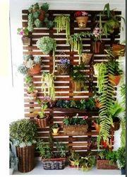 Small Balcony Garden Coir Pots
