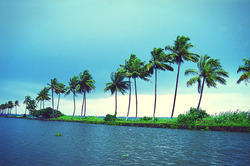 Life In Backwater Tour Package Service