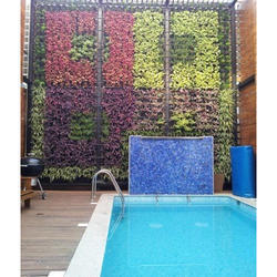 Green Wall Development Service
