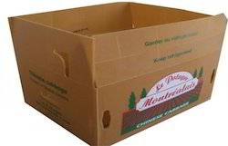 Cardboard Printed Boxes for Fruit Industry