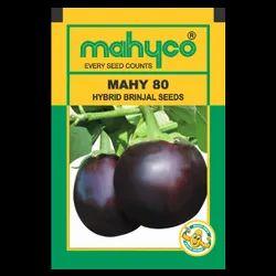 Brinjal Hybrid MAHY 80