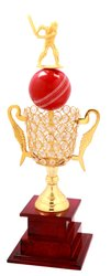 Golden Trophies For Cricket