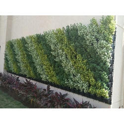 Vertical Green Wall Installation Service