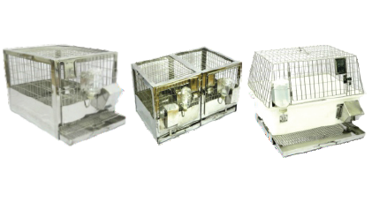 Laboratory Animal Cages And Racks - Laboratory Guinea Pig Cages