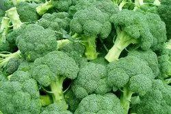 A Grade Green Fresh Broccoli, Packaging Type: Carton, Packaging Size: 20 Kg