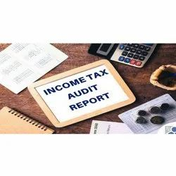 Online Income Tax Audit Services