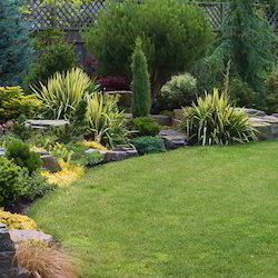 Garden landscaping services in noida landscape services workwithnaturefo