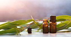 Eucalyptus Oil 80%