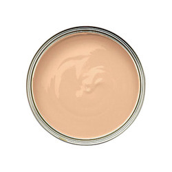 Exterior Emulsion Paint