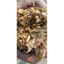 Forage Maize Cattle Feed, Packaging Type: Bales, Pack Size: 100 Kg